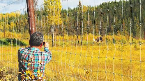 Man taking photo of wildlife from afar.