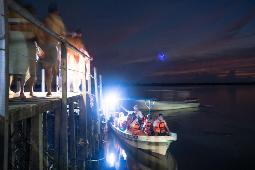 Show item 4 of 8. Manialtepec Lagoon Bioluminescence Cruise
