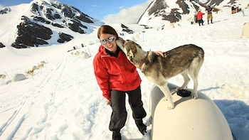 Helicopter Flight & Glacier Dog Sledding Tour
