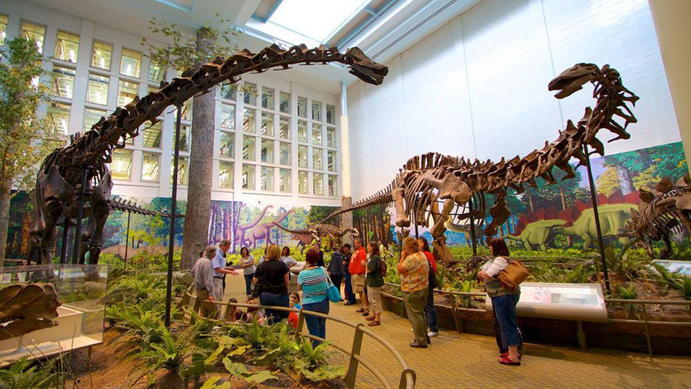 Dinosaur exhibit at Carnegie Museum of Natural History in Pittsburgh