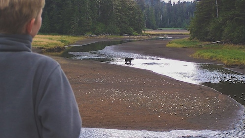 Man observing baby bear from a distance.