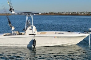 4 Hour Fishing Charter with Rods, Reels, Boat and Captain for up to 4 Peopl...