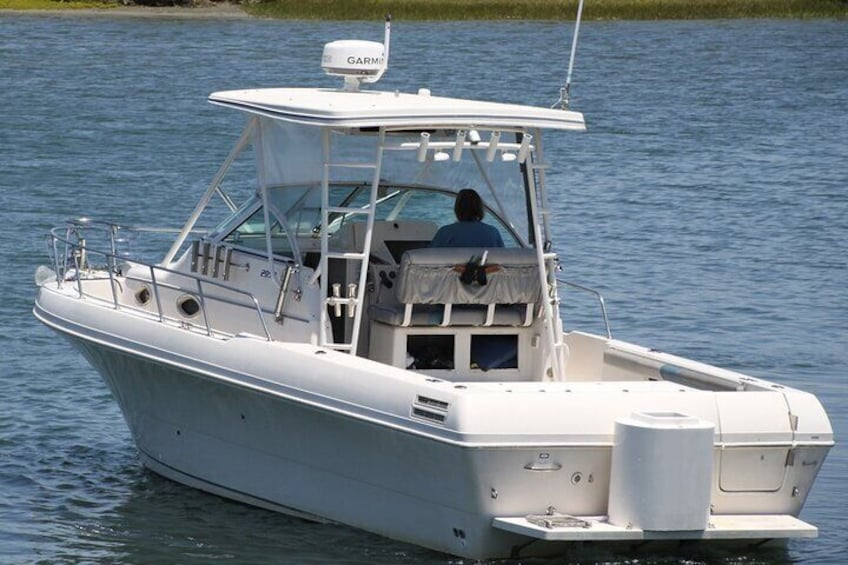 4 Hour Fishing Charter with Rods, Reels, Boat and Captain for up to 4 People