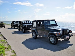 Cozumel Jeep Discovery Tour with Snorkelling & Dolphin Moment