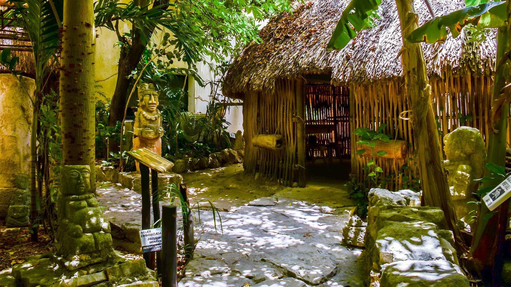 Nature reserve in Cancun