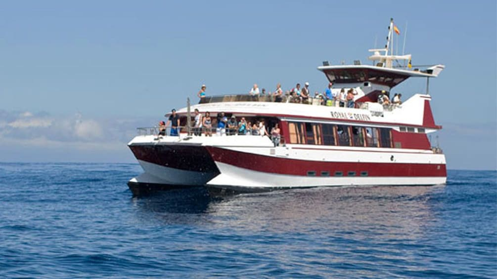 Show item 3 of 7. Royal Delfin Cruise in Tenerife, Spain