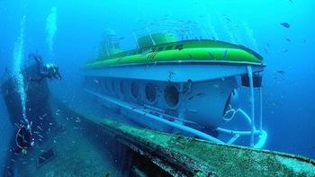 Safari sous-marin dans les profondeurs de l'Atlantique