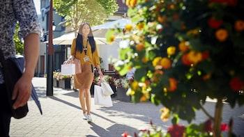 Shopping Express zum Einkaufszentrum Wertheim Village ab Frankfurt mit Guts...