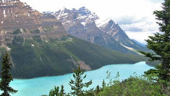 Columbia Icefield Adventure 1-Day Tour from Calgary or Banff