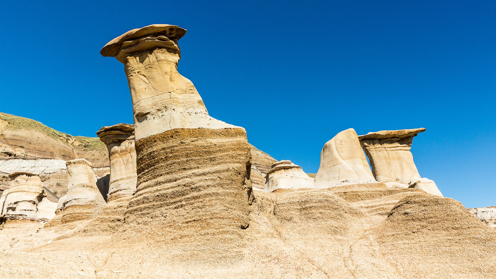 Full-Day Drumheller & Horseshoe Canyon Tour
