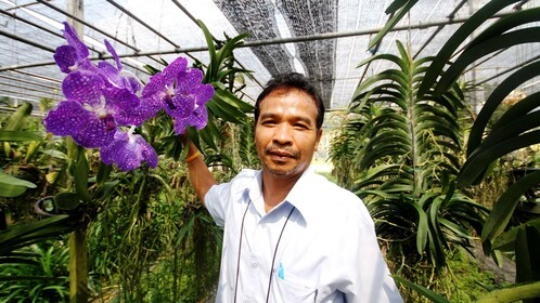 Man standing among flowers and plants in a greenhouse