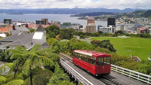 riding a red tram in Wellington