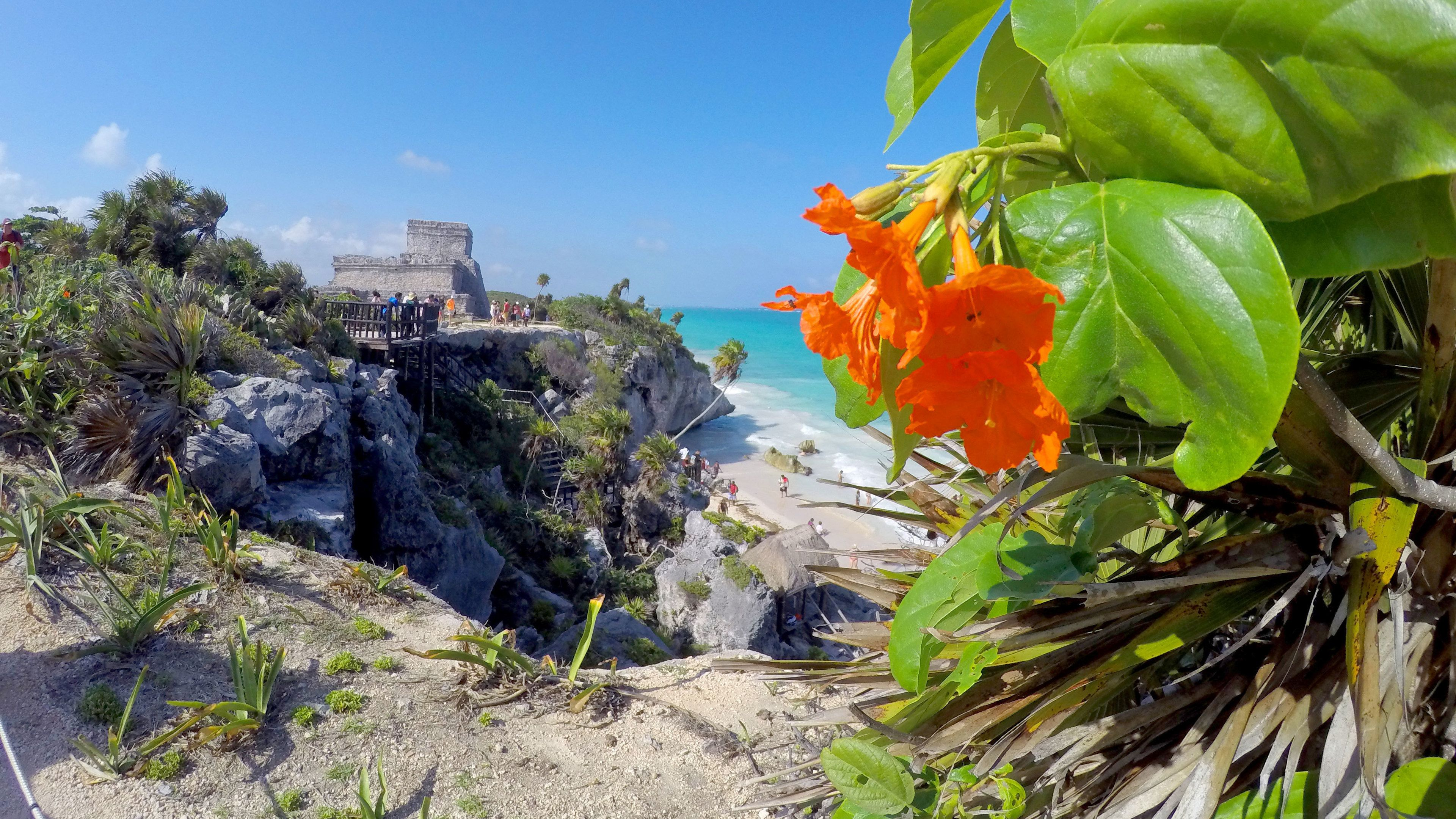 Colorful flowers on the hill with temple at Tulum in the distance