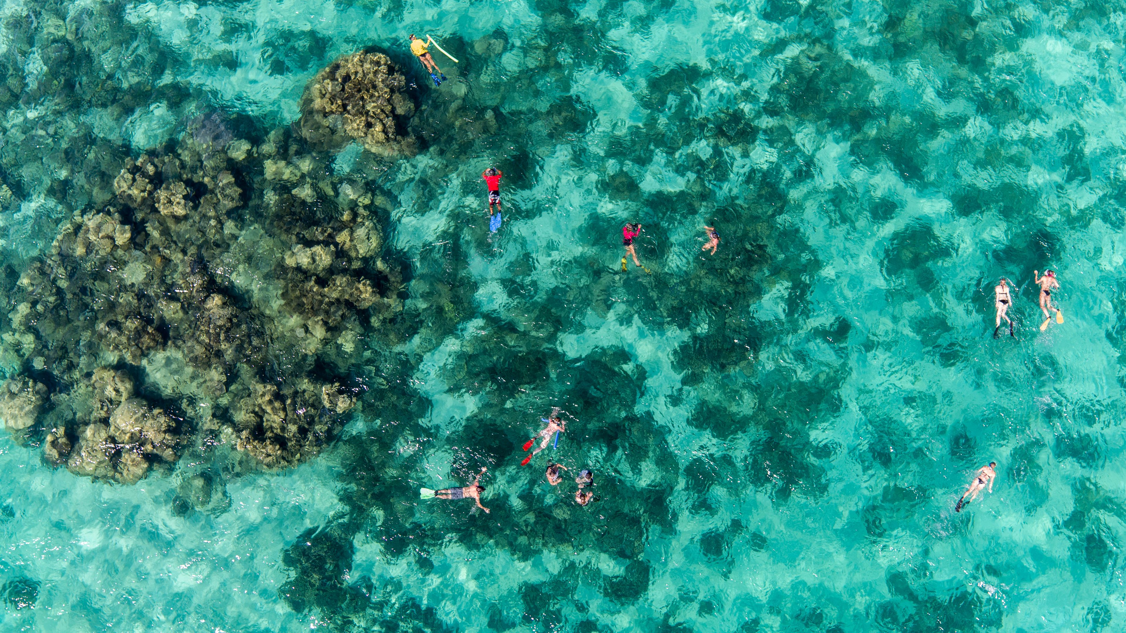 Aerial view of snorkelers in reef