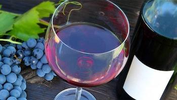 Wine Tasting Tour of the Patapsco Wine Region