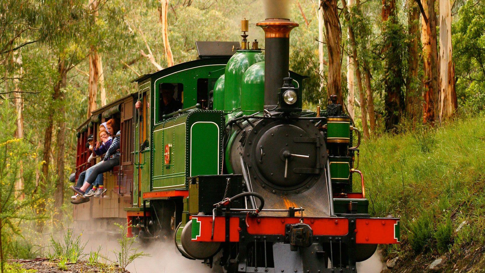 Steam train in Dandegnong