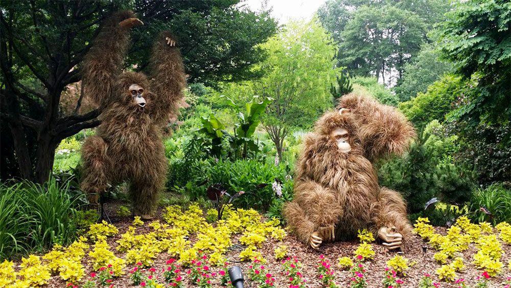 Small Group Tour to Atlanta Botanical Gardens