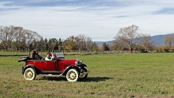 Private Half-Day Tour to El Cadillal via Vintage Car