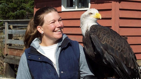Smiling woman with bald eagle in Alaska