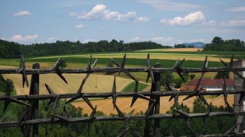 Field in Austria