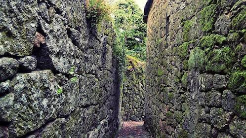 Narrow walkway between old stone walls in Lisbon
