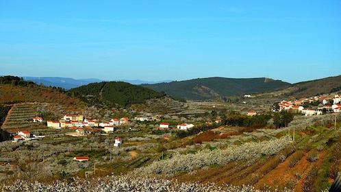 Panoramic view of a village in Lisbon