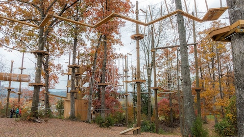 View of the Climb Zip Swing course in Sevierville (Pigeon Forge)
