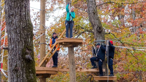 People climbing platforms on trees at Adventureworks in Nashville