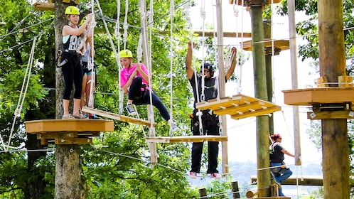 Full group swinging at the Climb Zip Swing in Sevierville (Pigeon Forge)