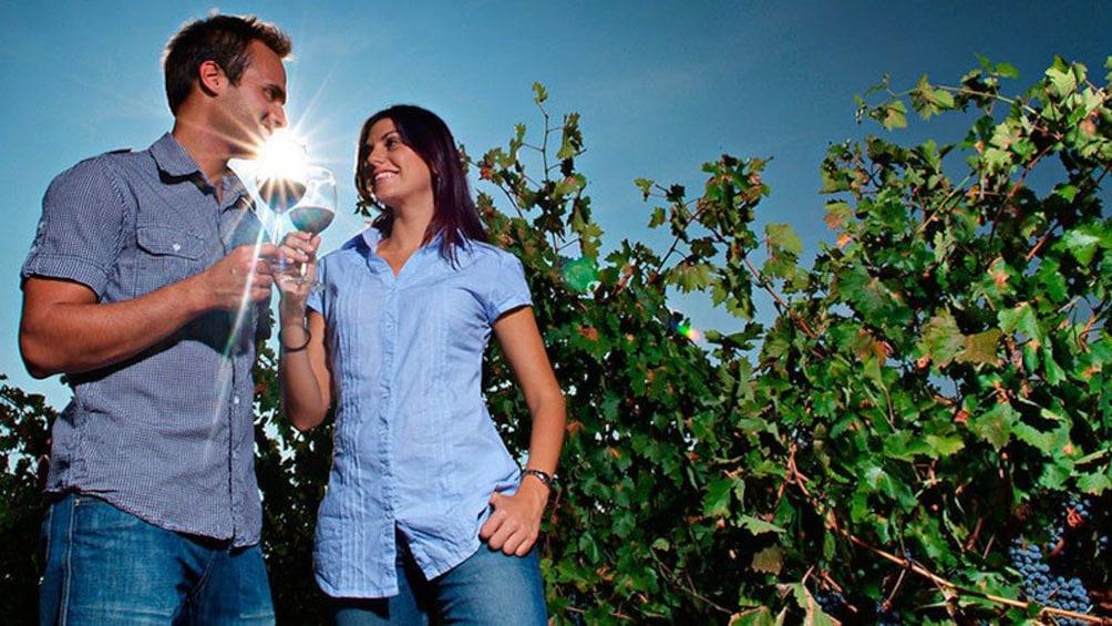 Foto 1 von 4 laden Two people drinking wine in a vineyard