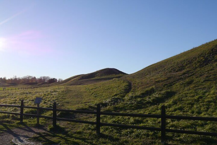 Guided tour 90min at Old Uppsala mounds and old Uppsala church