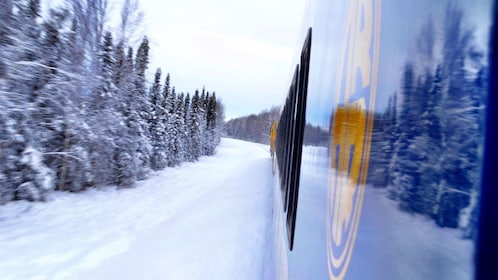 View from train in snowy countryside
