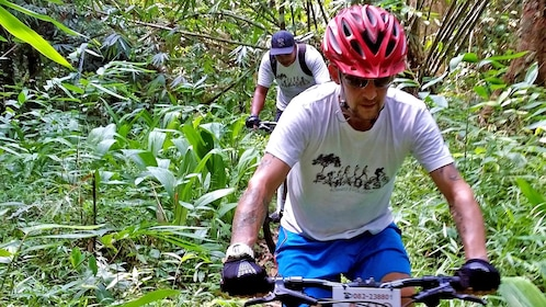 cyclists riding through the thick forest in Malaysia