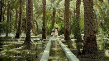 Full-Day Al Ain Private Customizable City Tour