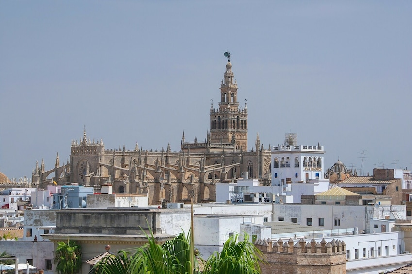 Skip the line combo tour to Alcazar & Cathedral of Seville