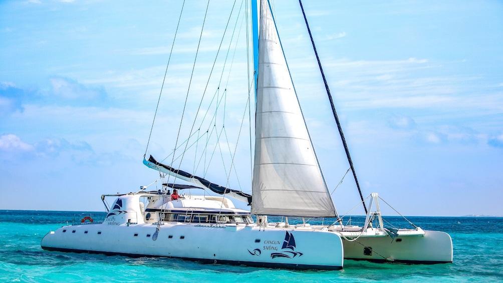 Charger l'élément 4 sur 10. Isla Mujeres Catamaran Tour