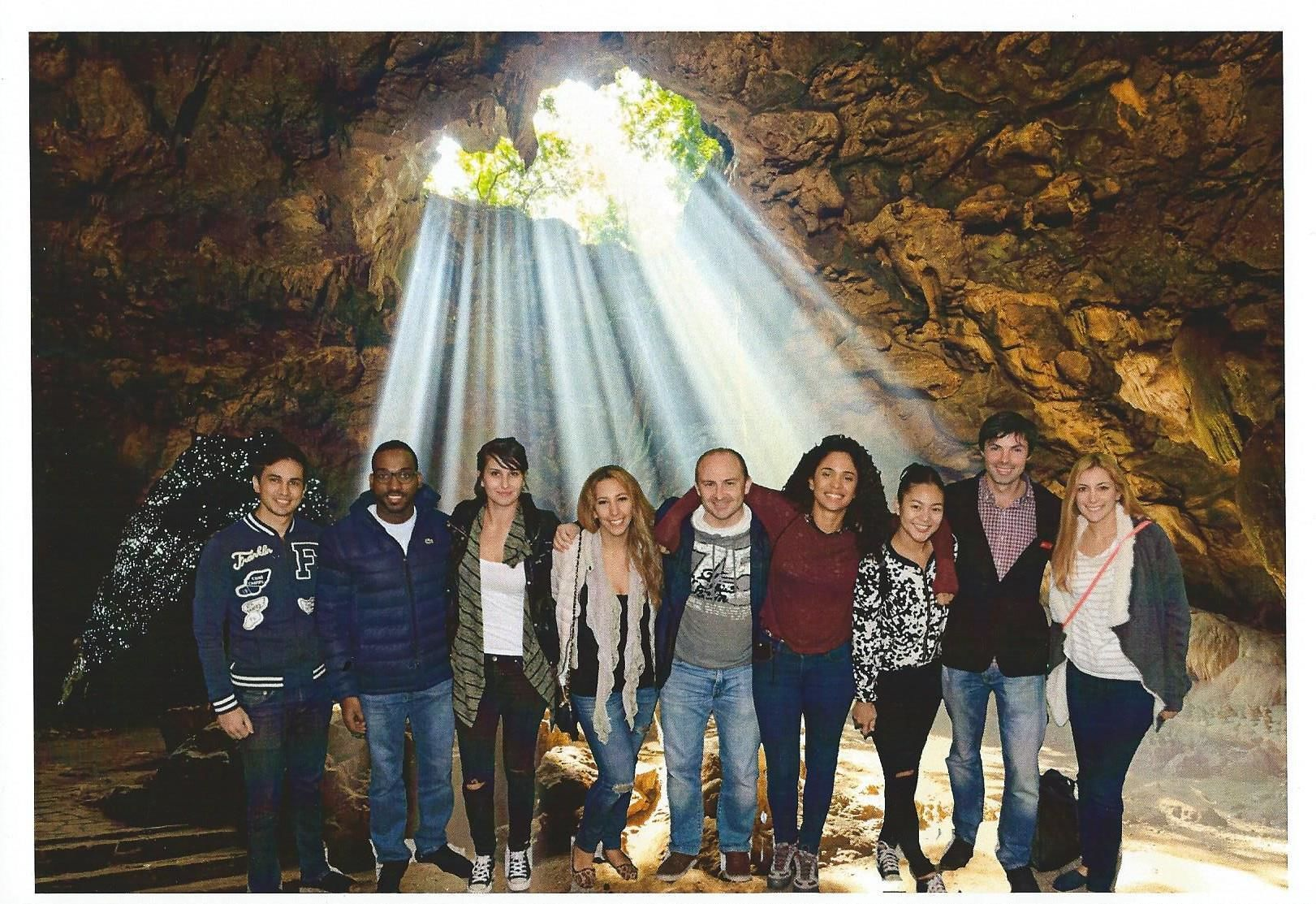 Private Transport to Hobbiton & Waitomo Caves