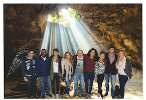 Private Transportation to Hobbiton & Waitomo Caves