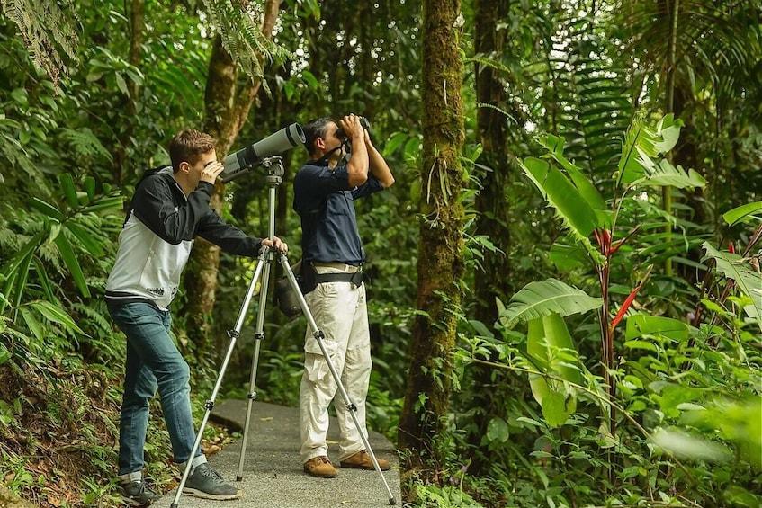 Show item 2 of 10. Bird-Watching Tour at Rainforest Adventures Park
