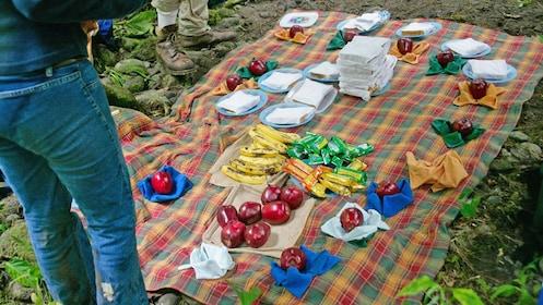 small picnic lunch in Costa Rica