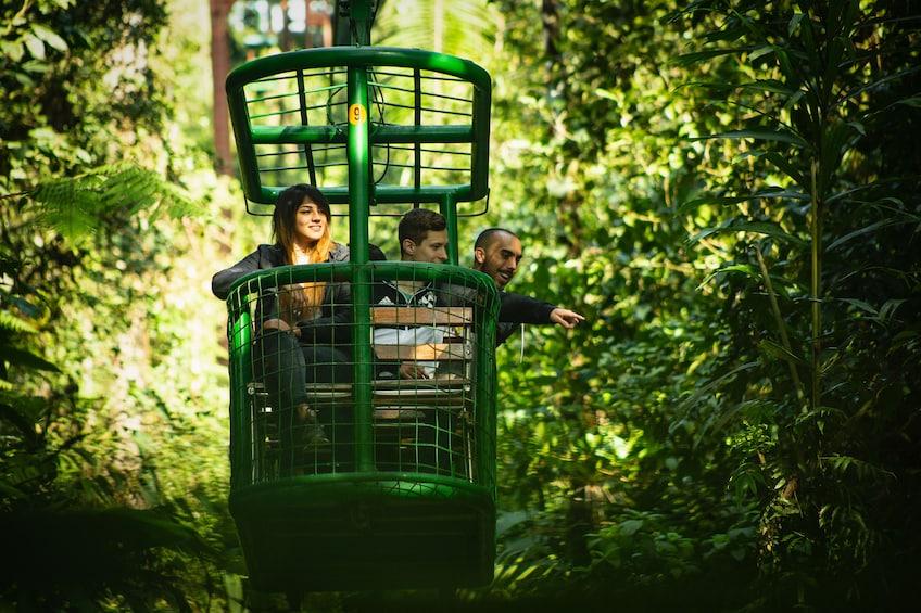 Show item 4 of 10. 6-in-1 Rainforest Eco-Adventure