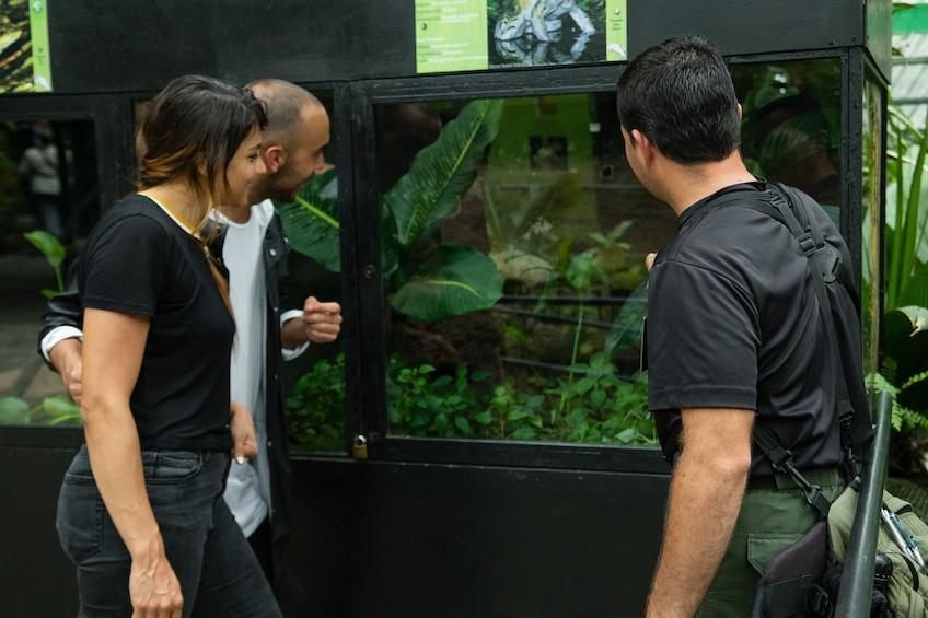 Show item 2 of 10. 6-in-1 Rainforest Eco-Adventure