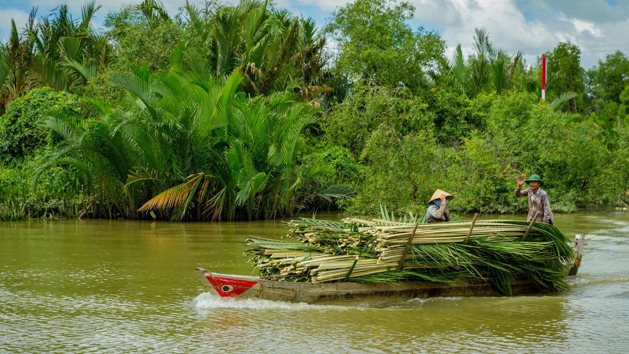 People hauling palm fronds in boat on river in Ho Chi Minh City, Vietnam