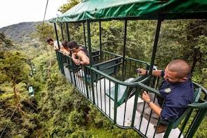 Costa Rica Rainforest Aerial Tram Tour