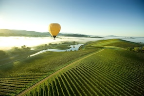 Yarra Valley Sunrise Hot-Air Balloon Ride & Winery Tour
