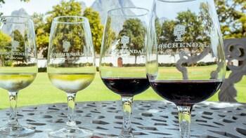 Excursion privée d'une journée aux vignobles de Stellenbosch, Franschhoek e...