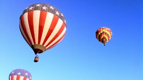 hot air balloons in the sky in Albuquerque