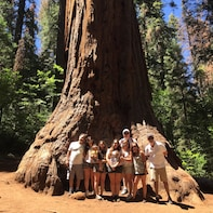 3 Hour Private Giant Sequoia 4X4 Jeep Tour & Hike