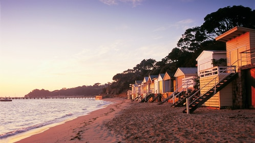 Cottages lining the beach at sunset in Australia