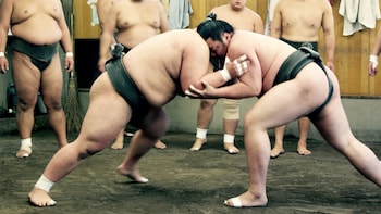 Sumo Practice Spectating at Sumo Stable